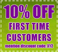 10% off first cleaning - discount coupon